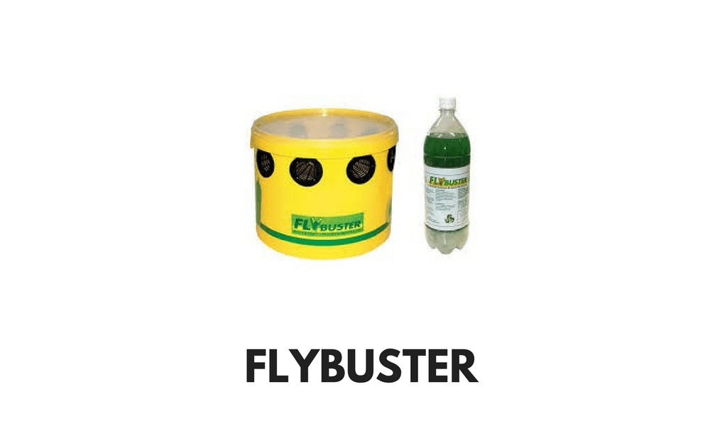 FLYBUSTER